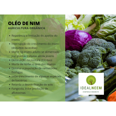 Original Nim (ÓLEO DE NIM) - KIT c/ 8 LITROS