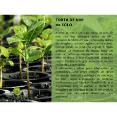 TORTA VEGETAL DE NIM ORGÂNICA - USO AGRÍCOLA 3KG